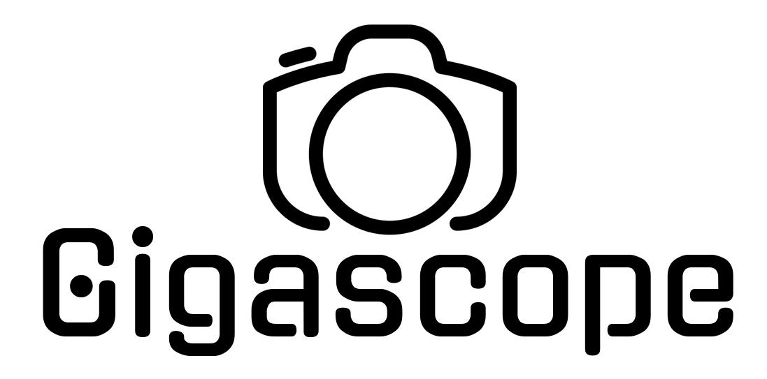 Gigascope